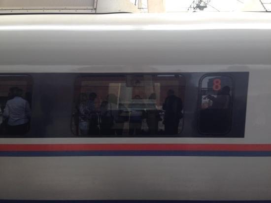 Sapsan Bullet Train: sapsan train