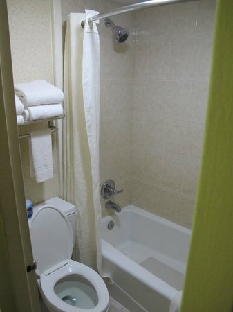 BEST WESTERN Historical Inn: Small bathroom