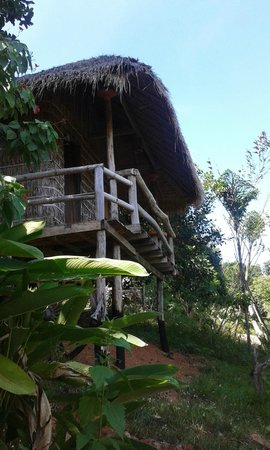 Tree Top Bungalows: My Hut