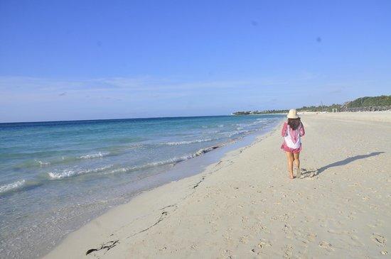 Blau Varadero Hotel Cuba: Bella Playa