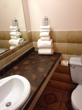 Admiral Inn & Conference Centre: Dated bathroom room 114