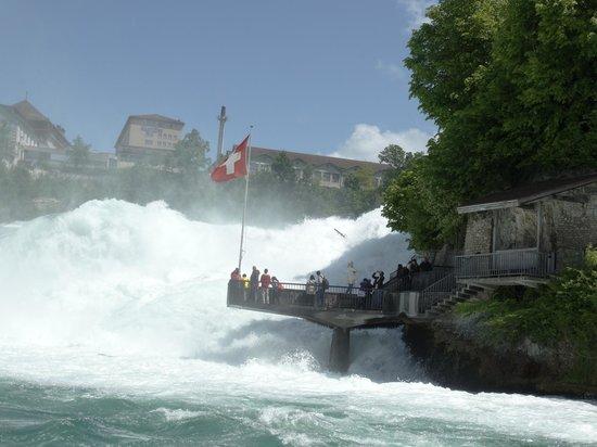 Rhine Falls : Rheinfalls