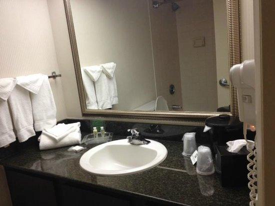 Holiday Inn Evansville Airport Hotel : Bathroom