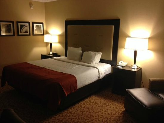 Holiday Inn Evansville Airport Hotel: Bed with the smallest pillows ever