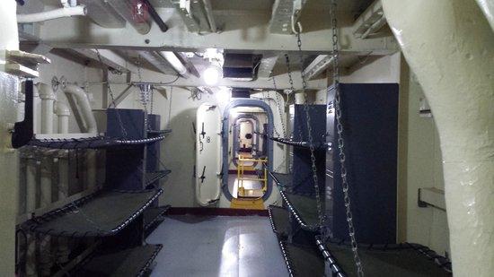 USS LST 393 : bunks