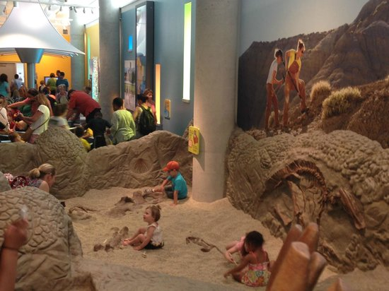 Denver Museum of Nature & Science : Digging in Dinosaur Gulch