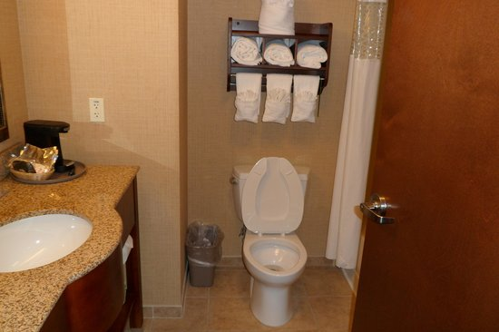 Hampton Inn Leesburg - Tavares: bathroom