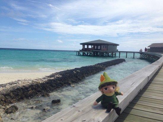 Centara Ras Fushi Resort & Spa Maldives : 早晨