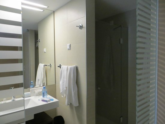 Valamar Lacroma Dubrovnik: Upstairs bath with shower