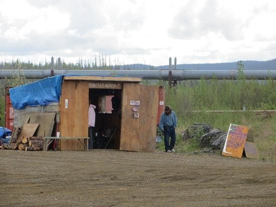 Northern Alaska Tour Company: gift shop on Yukon River
