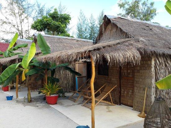 Elephant Garden Hostel: room with fan
