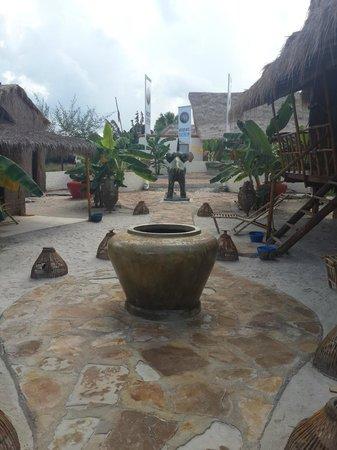 Elephant Garden Hostel: hotel & grounds