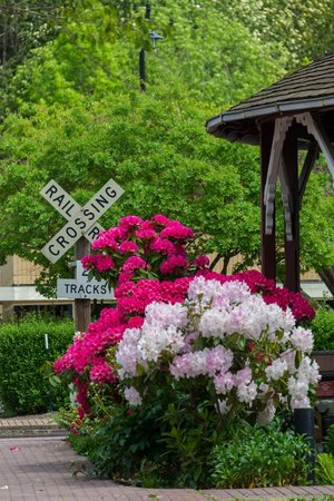 Northwest Railway Museum: Beautiful flowers line the outside of the museum