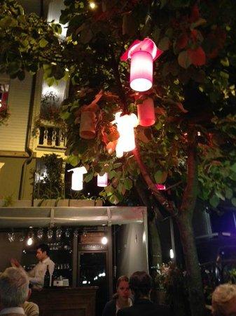 House of Medusa : Enchanted patio