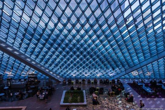 Seattle Public Library: Huge human fly-swatter