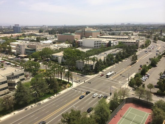Doubletree by Hilton Anaheim - Orange County: View from room