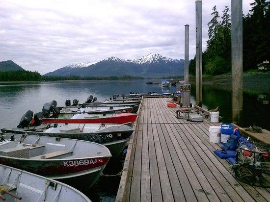 Island point lodge updated 2017 reviews petersburg ak for Petersburg alaska fishing
