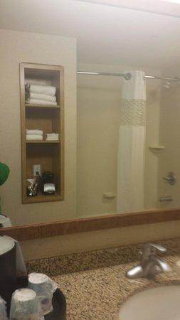 Hampton Inn and Suites Riverton: Large bathroom
