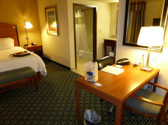 Hampton Inn & Suites Lancaster : King suite