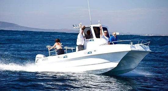 Point Runner Charters - Tours