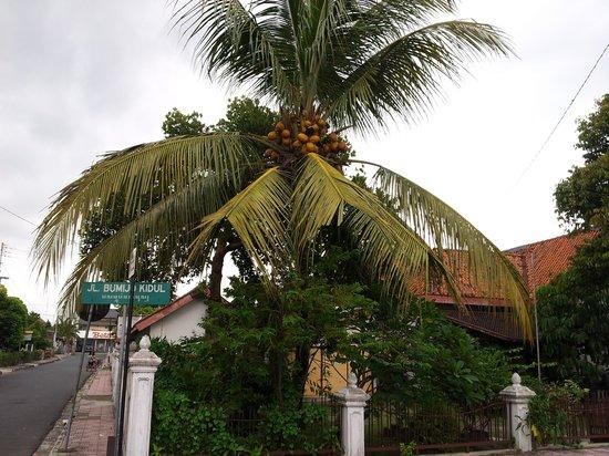 Ibis Styles Yogyakarta : Near around hotel