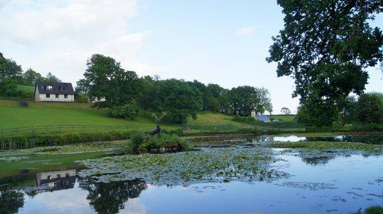 Rosecraddoc Manor: the lake