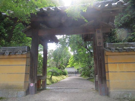 Akishinodera Temple: 秋篠寺南東門