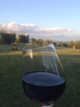 Locanda Poggioleone: Depuis la terrasse...