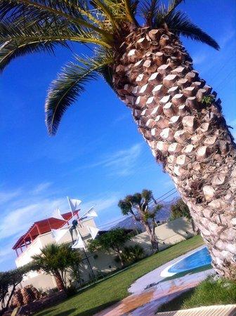 Tylissos Beach Hotel: Детский бассеин отель Tylissos Beach