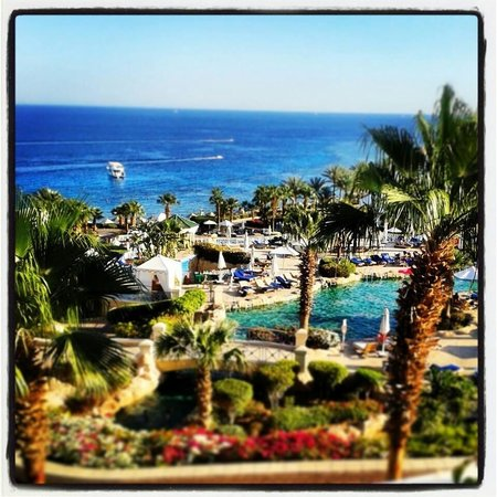 Hyatt Regency Sharm El Sheikh Resort: My happy place!