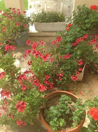 Kanali Hotel - Apartments: lovely gardens