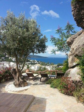 Aegean Gate Hotel : view from breakfast area
