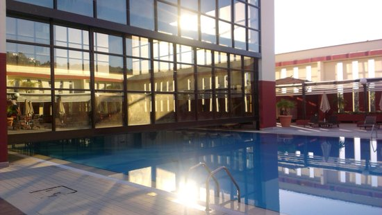 Sofitel Algiers Hamma Garden: Бассейн