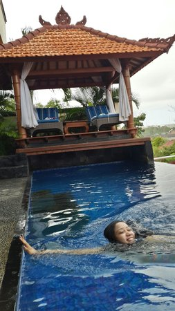 Jimbaran Cliffs Private Hotel & Spa : The pool in our room!