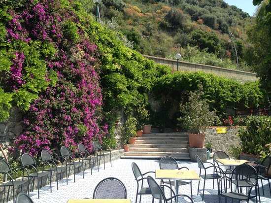 Hotel La Mandorla: The steps down to the hotel