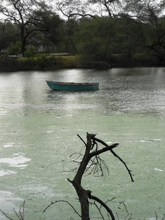 Keoladeo National Park: boat adrift after storm