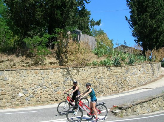 Cycling in Florence: The Florentine Chianti tour