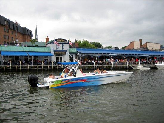 Historic Annapolis: Pusser's Dockside Terrasse