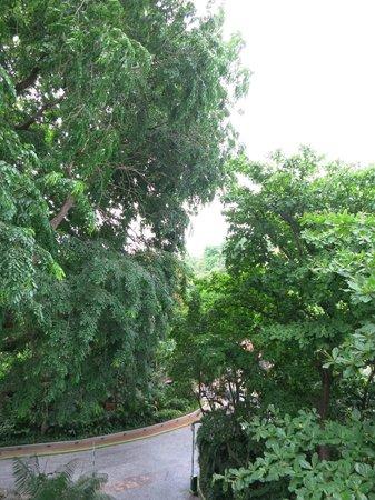Shangri-La's Rasa Sentosa Resort & Spa: View from room 788 - balcony 1