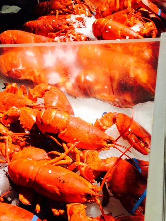 The Lobster Place : Aragoste