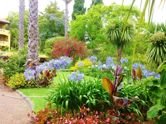 Pestana Village Garden Resort Aparthotel : stunning gardens
