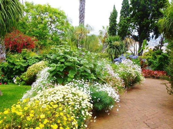 Pestana Village Garden Resort Aparthotel : lovely grounds