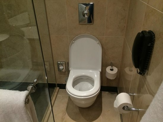 InterContinental Dusseldorf: Spacious Toilet