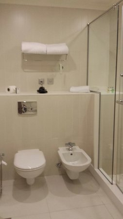 Millennium Airport Hotel Dubai: Walk in shower..toilet and b day...