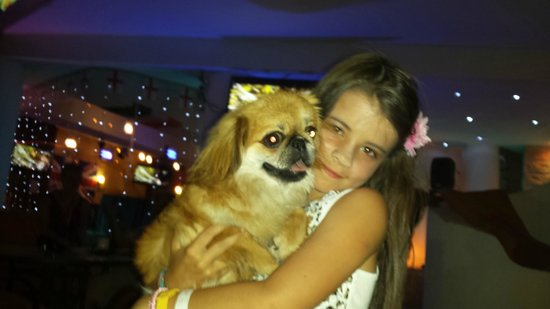 Jive 1 Bar: my other daughter with the other jive bar dog