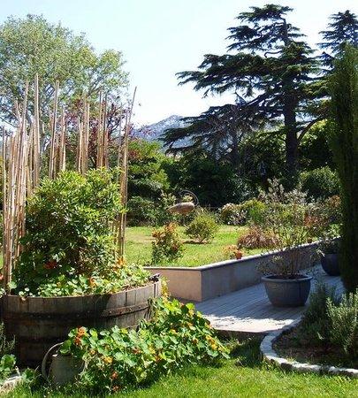 Hotel 96: Le jardin,