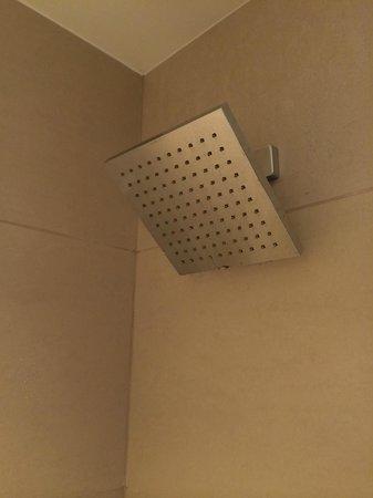 Grand Hyatt New York : The shower head