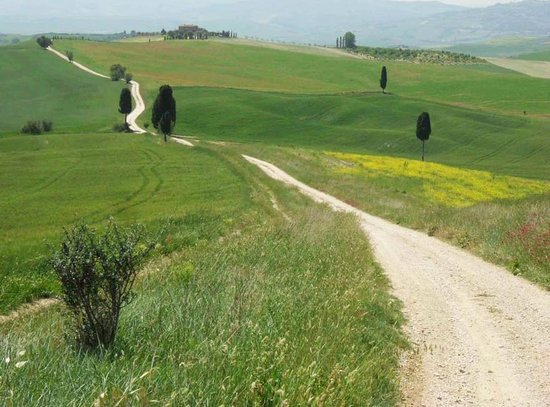 Walk About Tuscany Tours