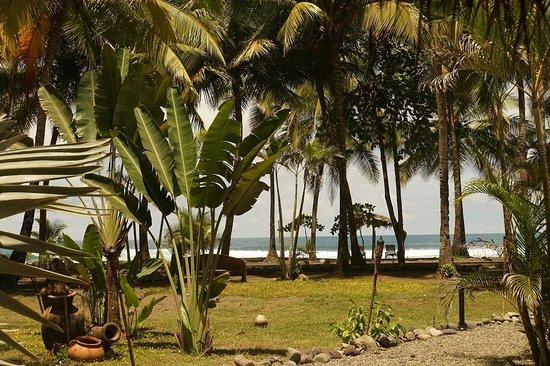 Clandestino Beach Resort: Poolbereich