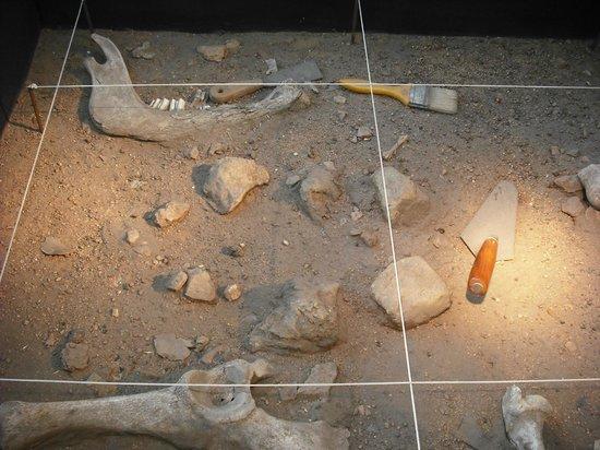 Museo de Almería: So sieht eine archäologische Fundstätte aus.
